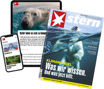 STERN PLUS - Print und Digital