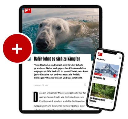 STERN PLUS – Upgrade für Print-Abonnenten